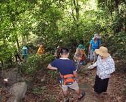 Thăm rừng quốc gia Cát Bà