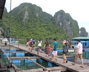 Tourists visit Cua Van Fishing Village